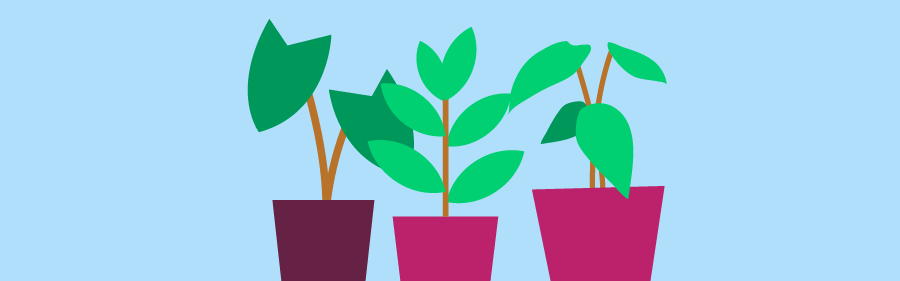 Graphic of lush potted plants